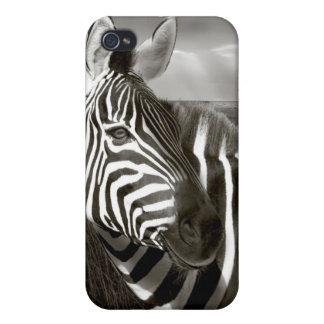 Kenia. Negro y blanco de la cebra y del llano iPhone 4 Cárcasas
