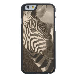 Kenia Negro y blanco de la cebra y del llano Funda De iPhone 6 Carved® De Arce