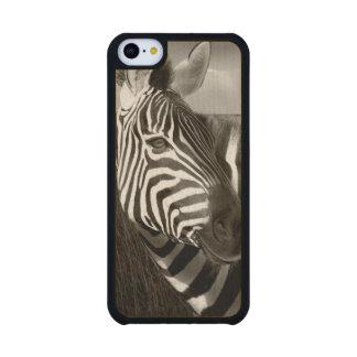 Kenia Negro y blanco de la cebra y del llano Funda De iPhone 5C Slim Arce