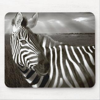 Kenia. Negro y blanco de la cebra y del llano Mousepads