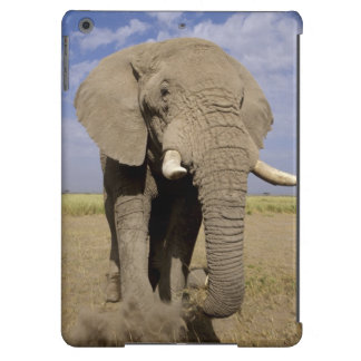 Kenia: Parque nacional de Amboseli, elefante mascu Carcasa Para iPad Air
