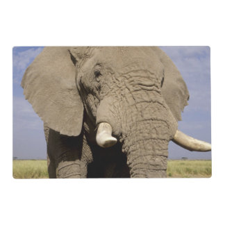 Kenia: Parque nacional de Amboseli, elefante Tapete Individual
