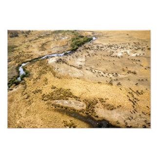 Kenia: Reserva nacional de Mara del Masai, Mara Fotografías