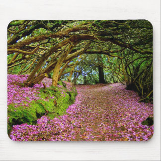 Kenmare Co. Kerry Ireland Mousepad