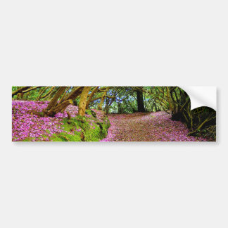 Kenmare Fairy Road Bumper Stickers