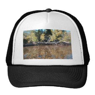 Kennedy Meadows, California Hats