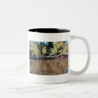 Kennedy Meadows, California Mug