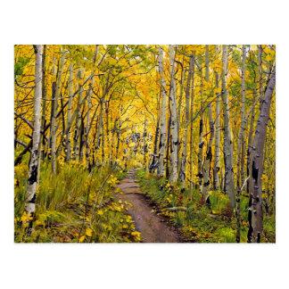 Kenosha to Breckenridge Trail Oil Painting Postcard