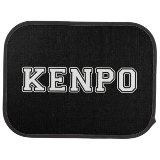Kenpo Car Floor Mat