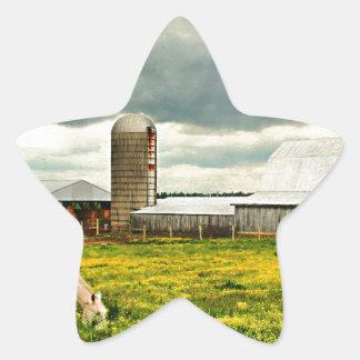 Kentucky Back Roads Star Sticker