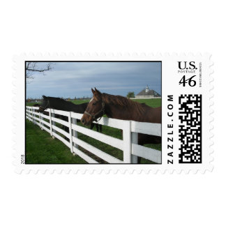 Kentucky Bluegrass Country Postage Stamp