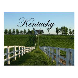 Kentucky Bluegrass Country Postcard