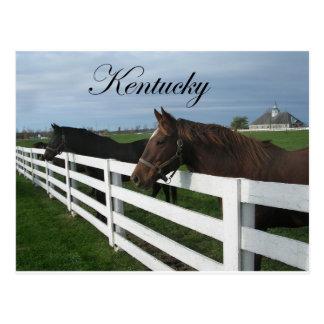 Kentucky Bluegrass Country Postcards