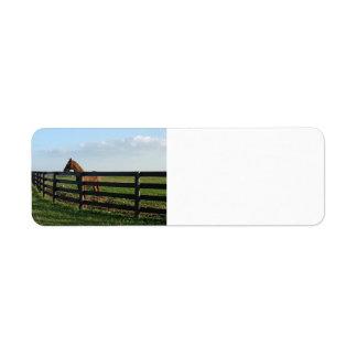 Kentucky Bluegrass Country Return Address Labels