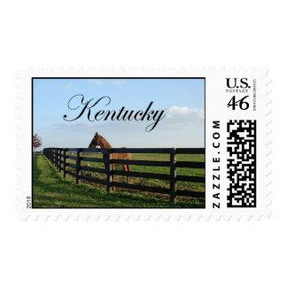 Kentucky Bluegrass Country Stamp