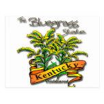 Kentucky Bluegrass State Goldenrod Postcard