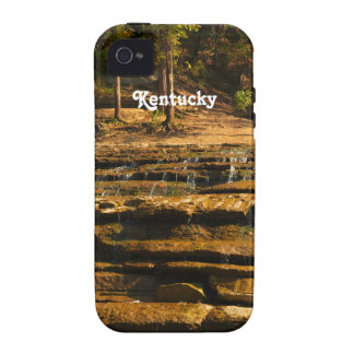 Kentucky iPhone 4/4S Covers