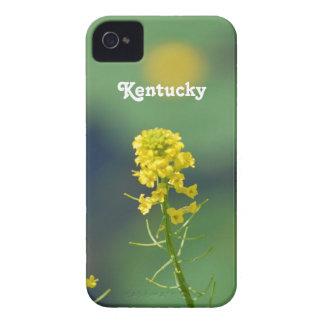 Kentucky Goldenrod iPhone 4 Case