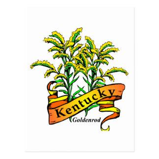 Kentucky Goldenrod Postcard