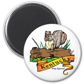 Kentucky grey squirrel 2 inch round magnet