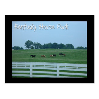 Kentucky Horse Park Postcard