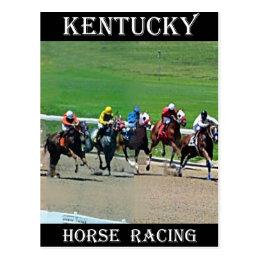 Kentucky Horse Racing Postcard