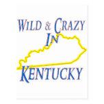 Kentucky - salvaje y loco postal