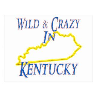 Kentucky - salvaje y loco tarjetas postales