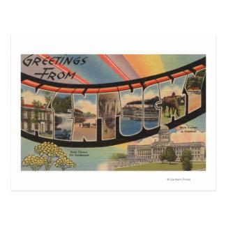 Kentucky (State Capital/Flower) Postcard