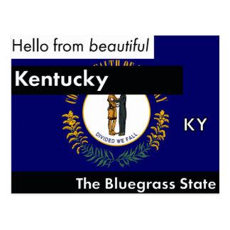 Kentucky The Bluegrass State Postcard