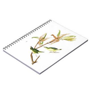 Kentucky Warbler John James Audubon Birds America Spiral Notebook