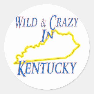 Kentucky - Wild and Crazy Sticker