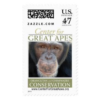 Kenuzy Stamp