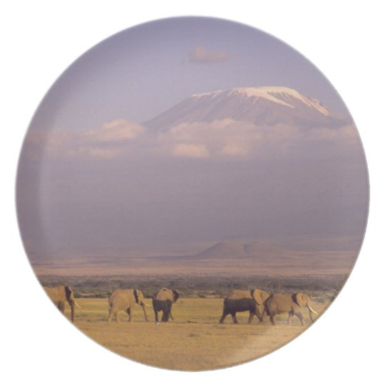 Kenya: Amboseli National Park, elephants and Melamine Plate