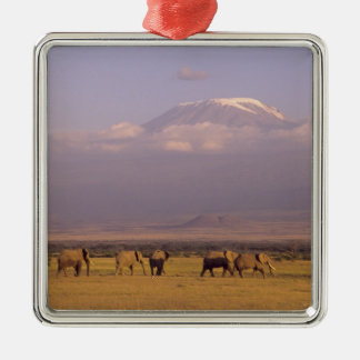 Kenya: Amboseli National Park, elephants and Square Metal Christmas Ornament