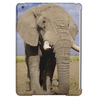 Kenya: Amboseli National Park, male elephant iPad Air Cover