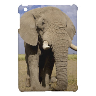 Kenya: Amboseli National Park, male elephant iPad Mini Cover