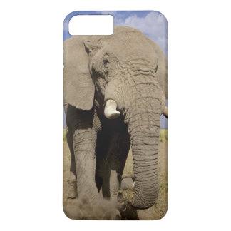 Kenya: Amboseli National Park, male elephant iPhone 8 Plus/7 Plus Case