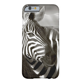 Kenya. Black & white of zebra and plain. Barely There iPhone 6 Case