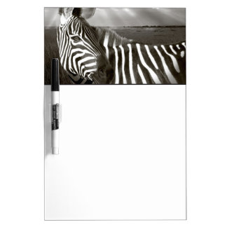 Kenya. Black & white of zebra and plain. Dry-Erase Board