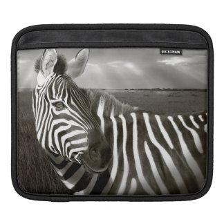 Kenya. Black & white of zebra and plain. iPad Sleeve