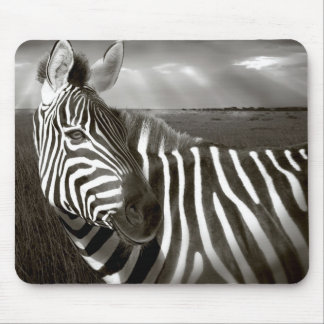 Kenya. Black & white of zebra and plain. Mouse Pad