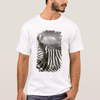 Kenya. Black & white of zebra and plain. T-Shirt