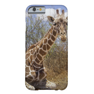 Kenya: Laikipia Plateau, Loisaba Wilderness Barely There iPhone 6 Case