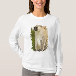 Kenya, Lake Nakuru National Park. Vervet T-Shirt