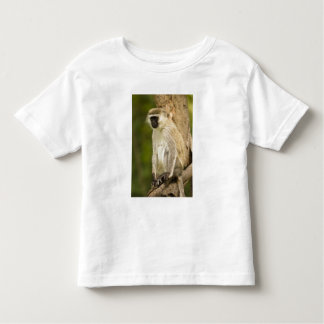 Kenya, Lake Nakuru National Park. Vervet Toddler T-shirt