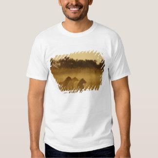 Kenya: Lake Turkana National Park, pack of T-Shirt