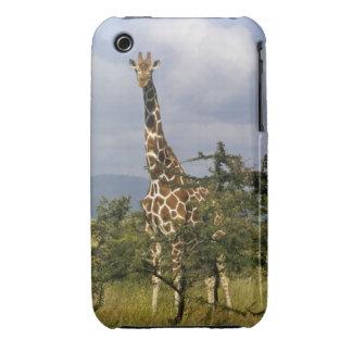 Kenya: Lewa Wildlife Conservancy, reticulated iPhone 3 Case
