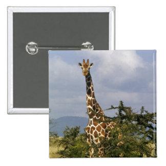 Kenya: Lewa Wildlife Conservancy, reticulated Pinback Button