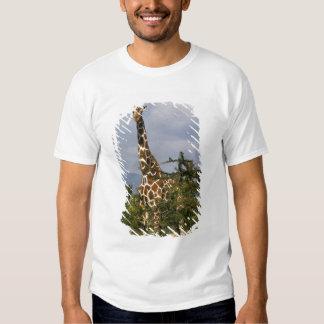 Kenya: Lewa Wildlife Conservancy, reticulated T-Shirt